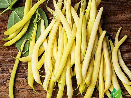Hạt giống đậu cove bụi vàng