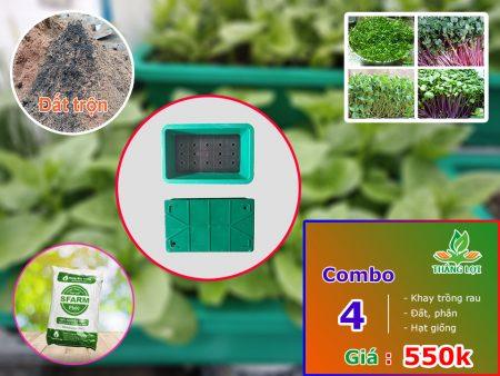 Combo 4 khay trồng rau