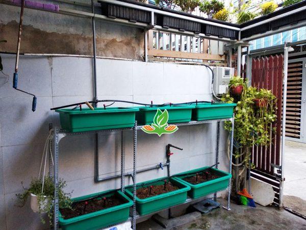 Bộ kệ trồng rau đứng 2 tầng 6 khay không giàn leo