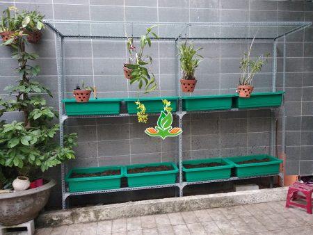 Bộ kệ trồng rau đứng 2 tầng 8 khay có giàn leo